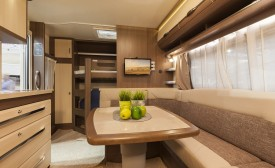 """""""Plants that you will Love to have in your Motorhome"""""""