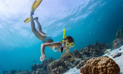 """""""5 Mejores Actividades en el Mar de Fuerteventura"""""""